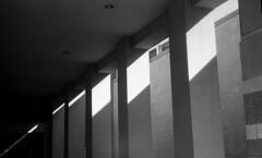 LeicaIIII_Summar_TriX_078_final_edited-1