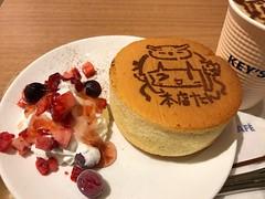 ビックロたんケーキ