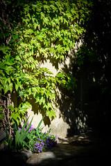 Perfect Place - Photo of Fontanès