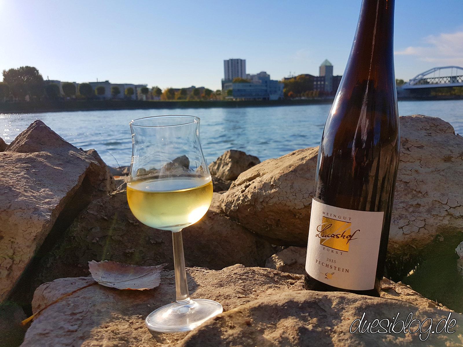 Generation Pfalz WtasO Wein trinken an schönen Orten mit Lucashof am Rheinstrand Mannheim duesiblog 2