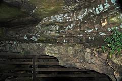 Big Clifty Sandstone over Girkin Limestone (Upper Mississippian; James Cave, near Park City, Kentucky, USA) 7
