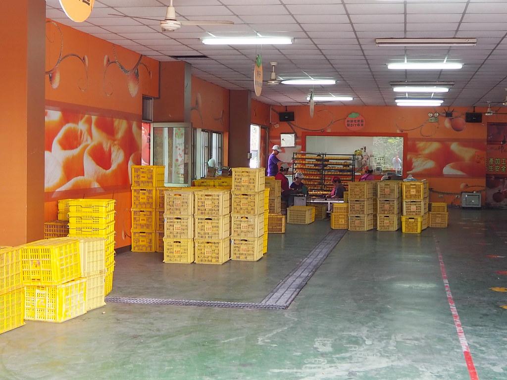 番路柿餅spa工坊 (7)