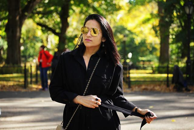 Central Park Tanvii.com 7