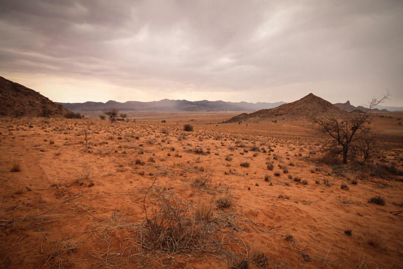 Namibia-Auto-Safari-4x4-Steppe