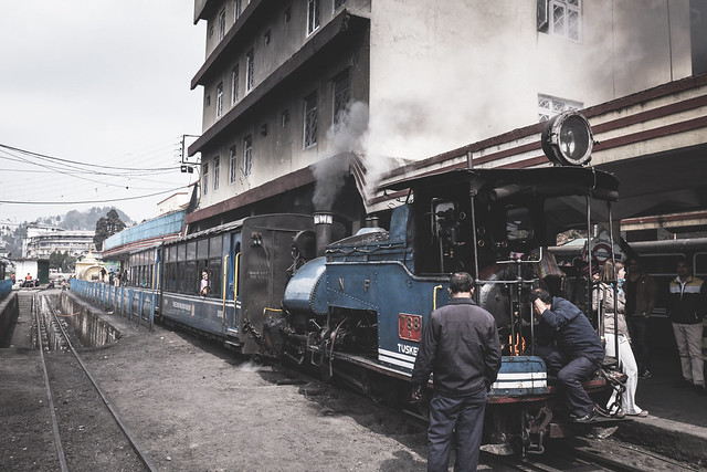 Darjeerling - Toy Train-2