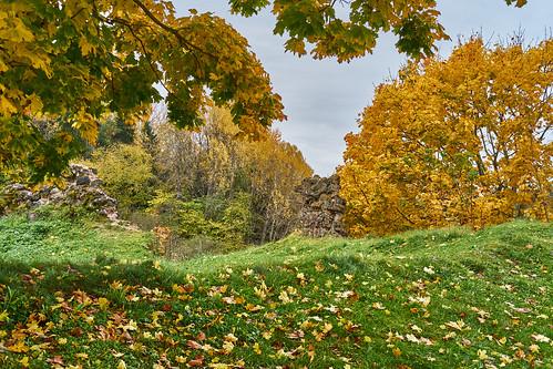 karksinuia eesti october autumn viljandimaa viljandi