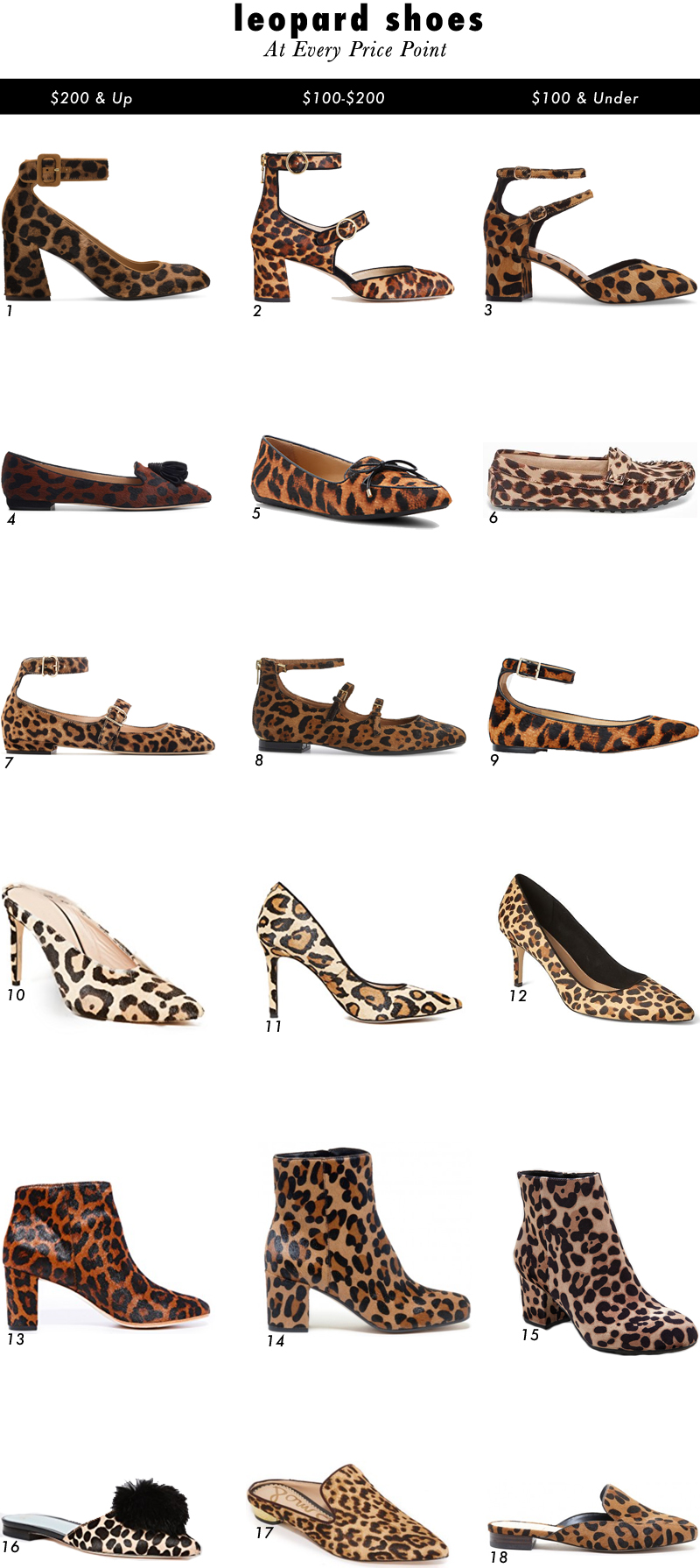 Leopard Shoes 2017 updated