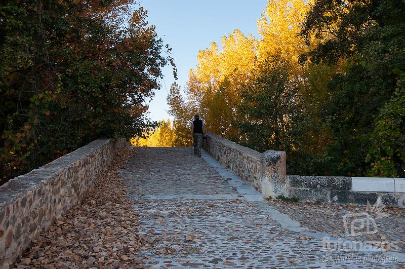 Puente Romano Talamanca del Jarama