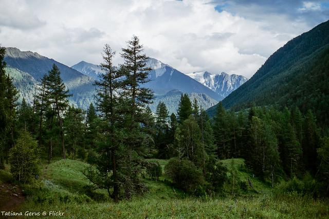 Header of Altai