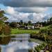 Canalside Farm