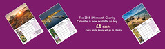 iPlymouth Flickr Group Charity Calendar Banner