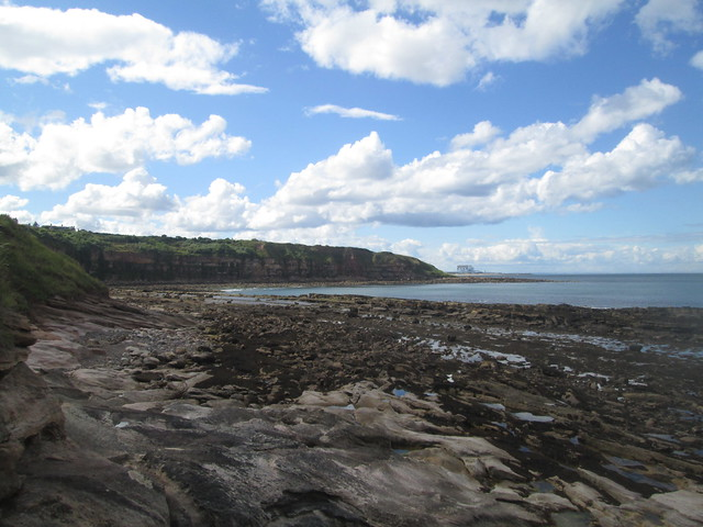 sea  at Cove