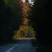 Heading towards autumn
