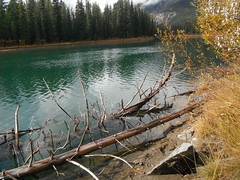 Autumn Banff National Park