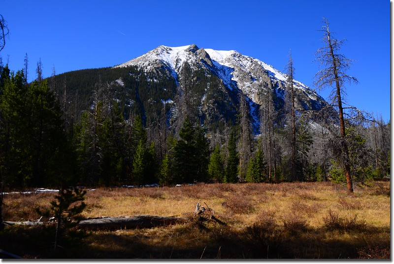 View of Buffalo Mountain up close from the meadow along Gore Range Trail 1