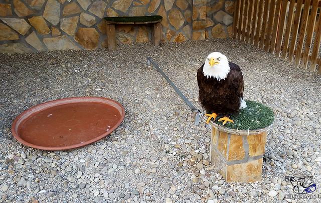 Visitamos Tierra Rapaz 3