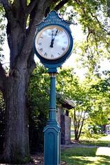 Clock at New York Botanical Garden