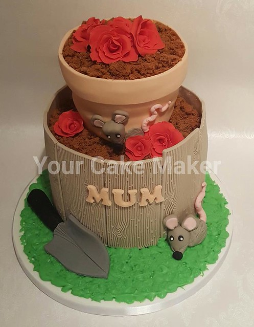 Cake by Your Cake Maker