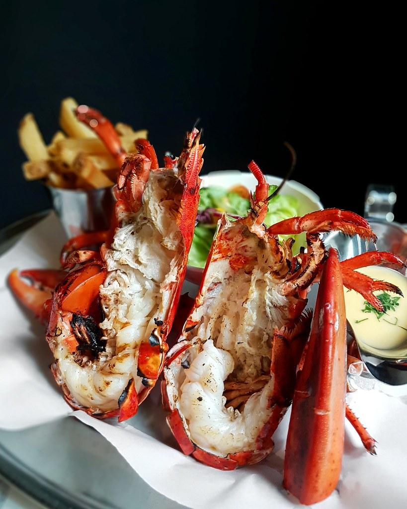 live lobster 2