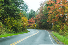 Road Curving in Fall Landscape