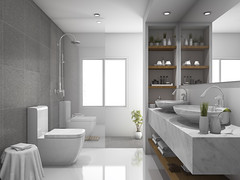 Bathroom Design Ideas and Trends