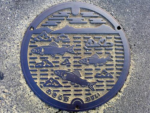 Akiruno Tokyo, manhole cover (東京都あきる野市のマンホール)