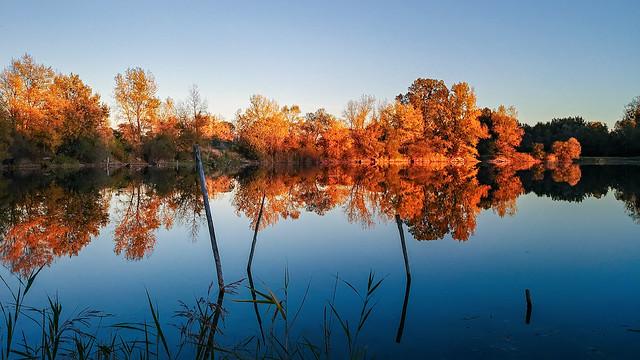 Autumnn...