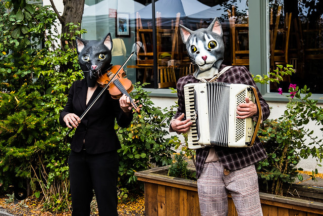 Buskers.  Or maybe I should say, Whiskers