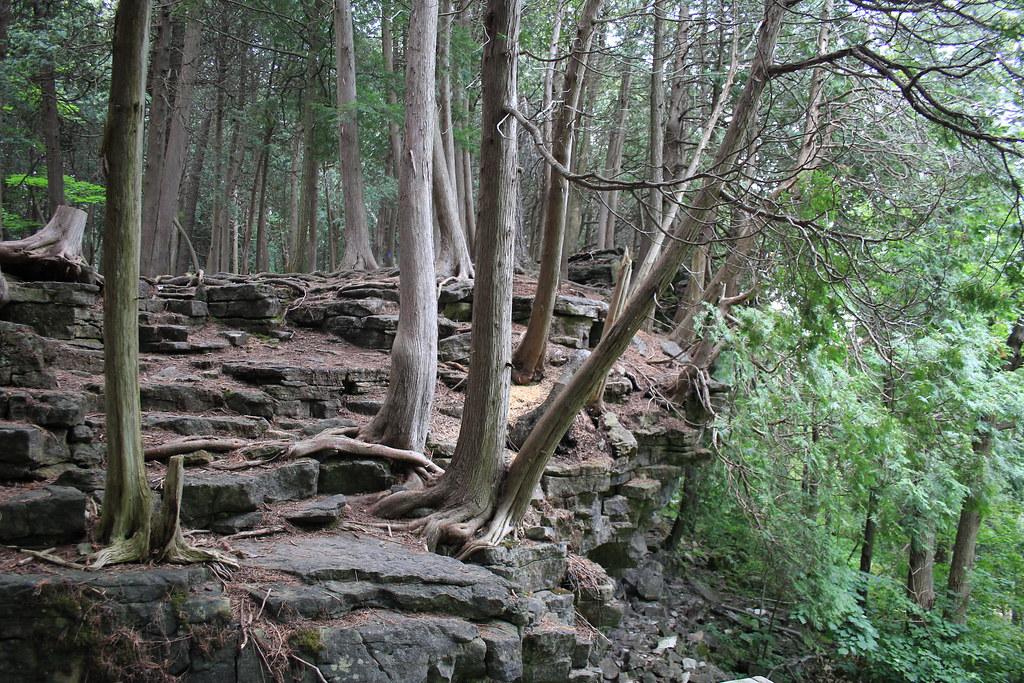 Hilton Falls Side Trail