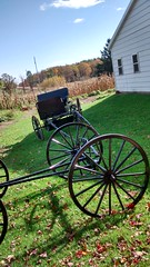 parts of an amish buggy