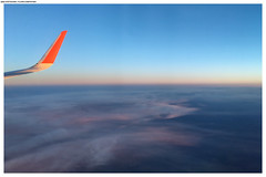 Flight FCO — SVO
