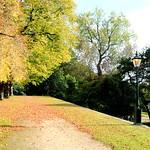 Autumn walkway in Preston