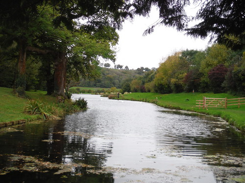 Whitewool Pond Fly Fishing (meonsprings.com)