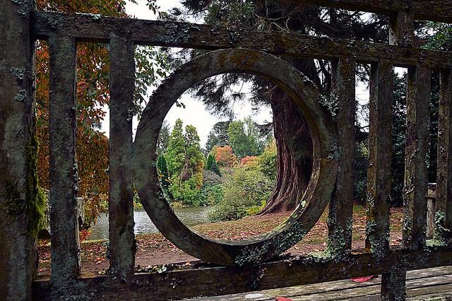 Through the circle