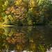 Muriel Hepner Nature Park