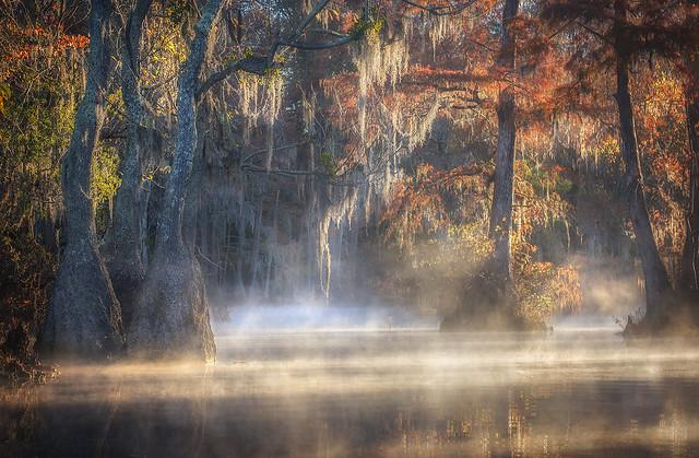 Swamp Things, Autumn