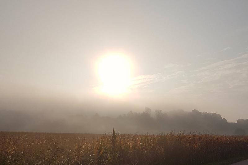 Nebeliger Morgen