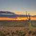 Vereley Hill Sunset