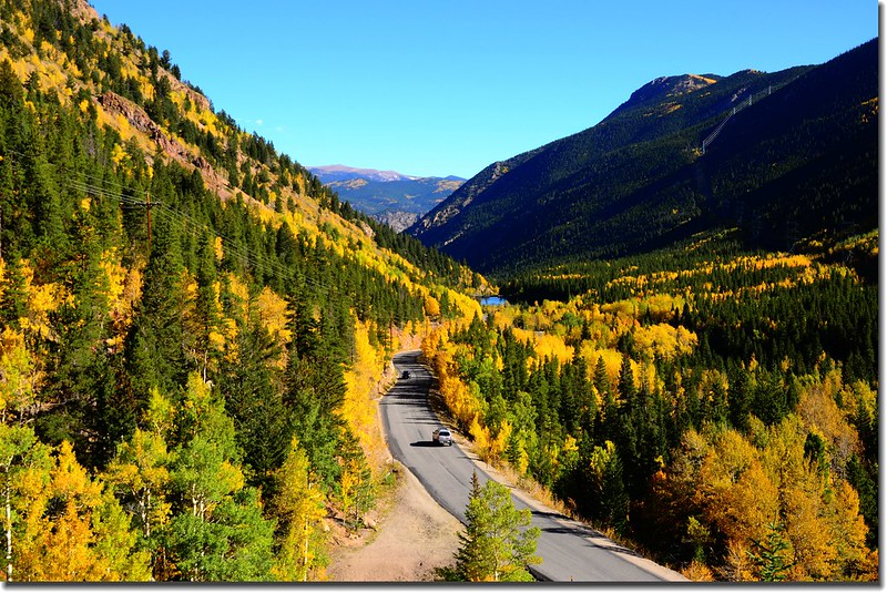Fall colors, Guanella Pass, Colorado (28)