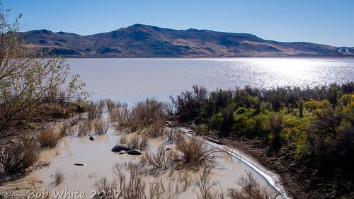 nevada washoecounty coldsprings whitelake lake brown dirtywater commute hwy395 junk trash litter tires