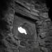 Craigmillar Castle Edinburgh A Symphony in Stone (39)