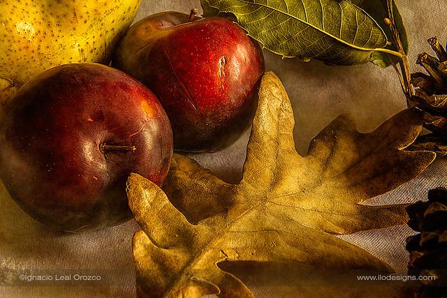 Autumn plums