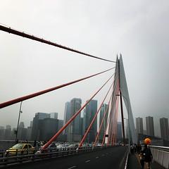 Bridge & Road