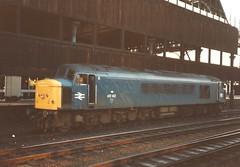 BR Class 45/1 45142 - Manchester Victoria