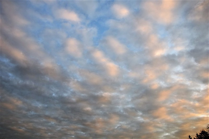 Clouds 24.10 (10)