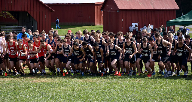 STA Captures 9th Consecutive IAC Cross-Country Win