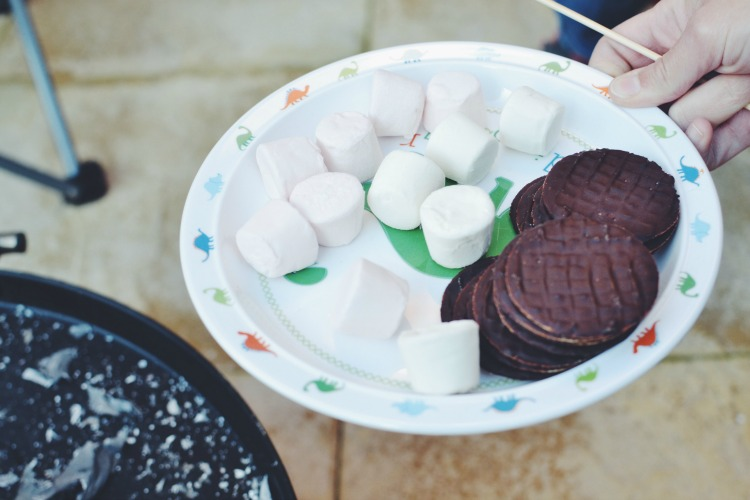 chocolate smores swedish torch