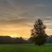 Woodcote sunset afterglow