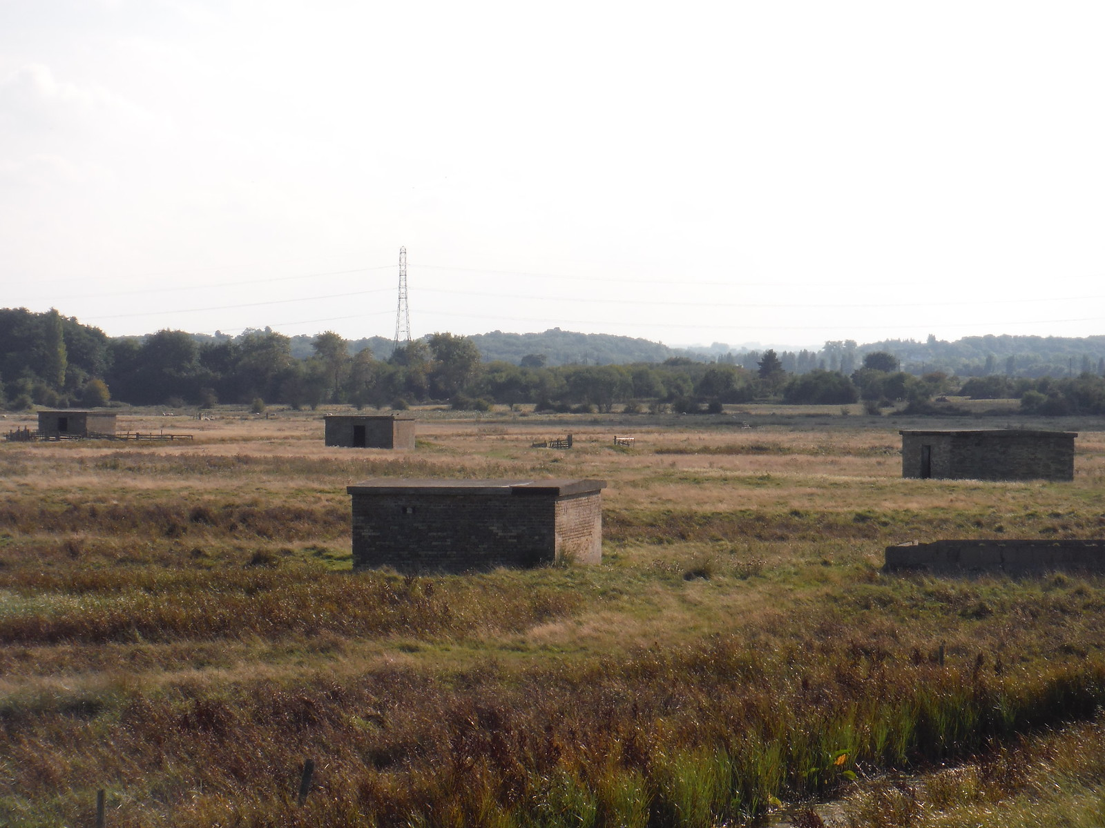 Pillboxes, Oare Marshes SWC Walk 299 - Teynham to Faversham