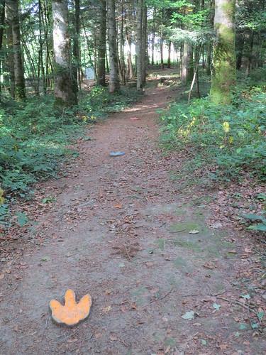 Sentier didactique JURASSICA : sur les traces du passé. . .